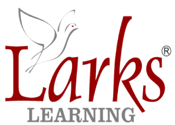 Larks Learning Customised Corporate Training Extended DISC Assessments Leadership Coaching Women Lead India